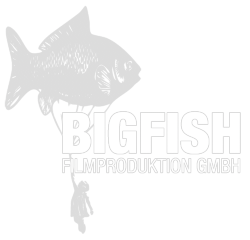 Logo studio bigfish
